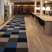 multi colored fraster felt rug in library area