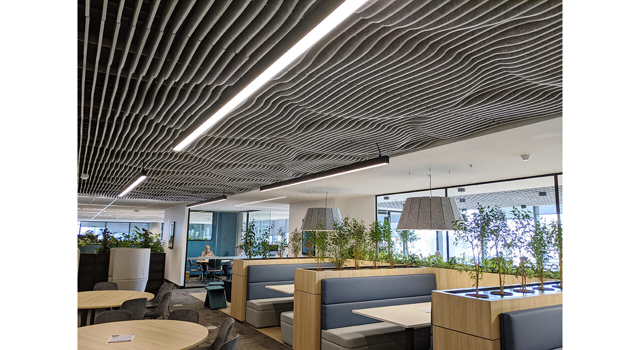 sound absorbing acoustic drop ceiling tiles in cafeteria