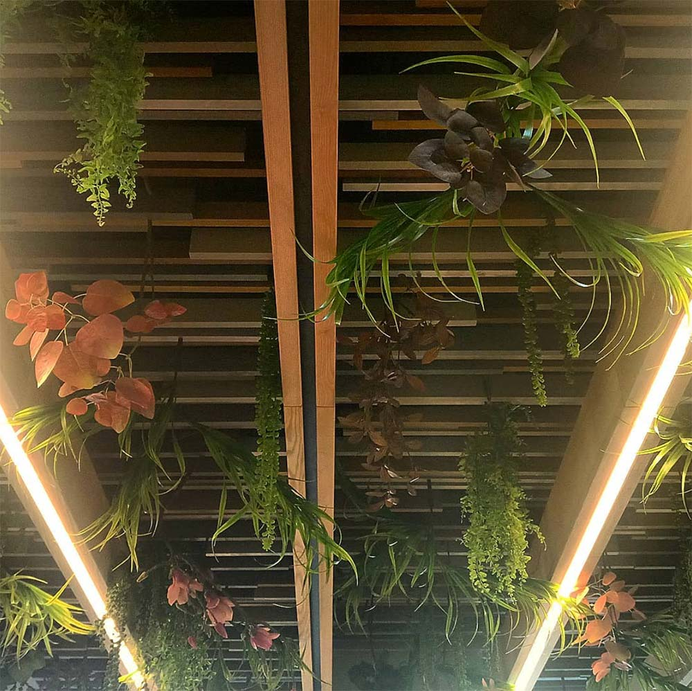plants hanging from a wooden structure on the ceiling