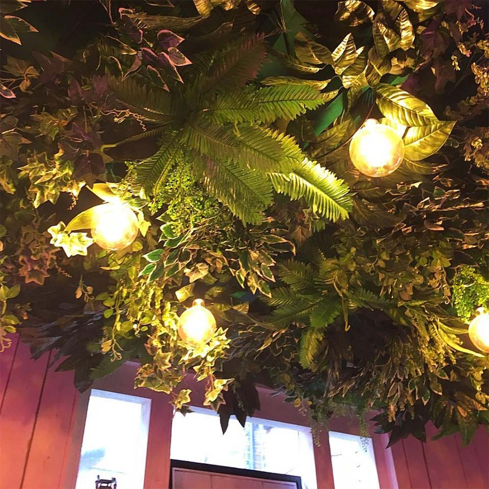 plants in a ceiling light fixture