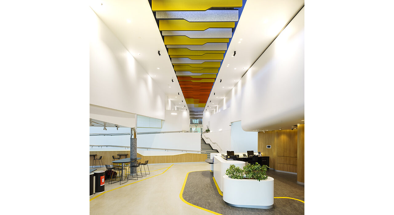 colorful baffles above office reception area